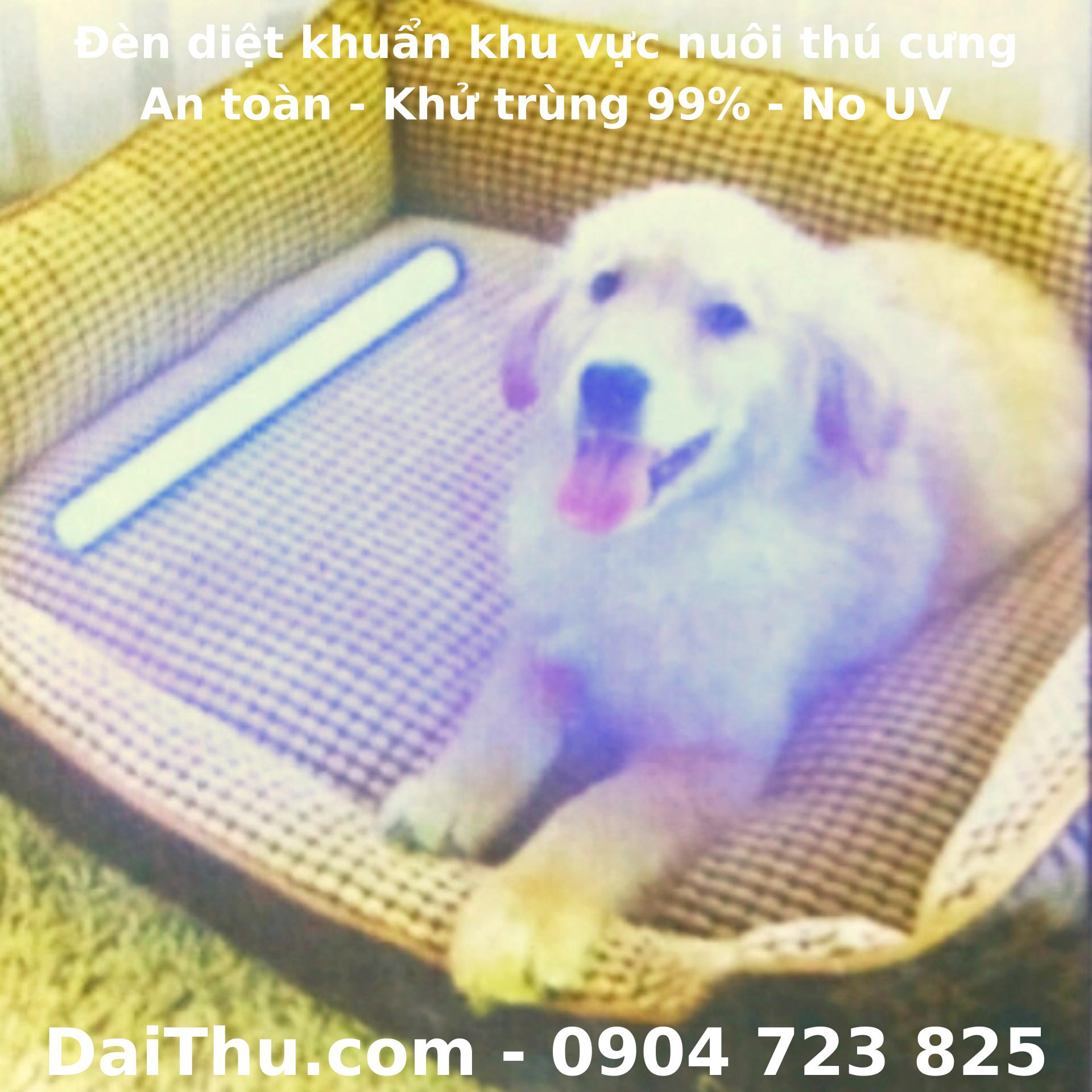Đèn diệt khuẩn cho thú cưng - An toàn - Khử trùng 99% - No UV - Philips 405nm 5W