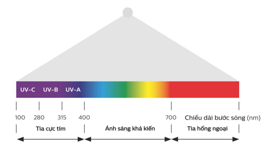 Công nghệ đèn UVC là gì - Ánh sáng tia cực tím diệt vi khuẩn - UVA UVB UVC